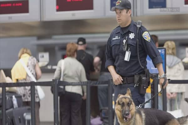 US, Mexico explore placing armed US air marshals on flights