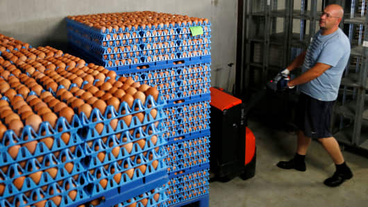 Norway's Olympians shell-shocked as they're sent 15000 eggs