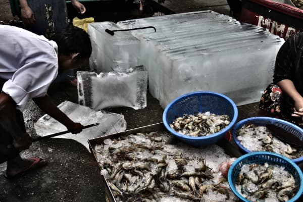 Ice vendors preserve shrimp for sale in an open-air, vegetable and seafood market in Yangon, Myanmar.
