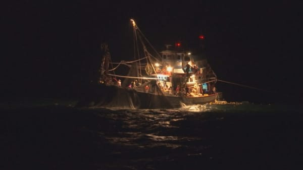 Oceans of crime inside illegal seafood trade