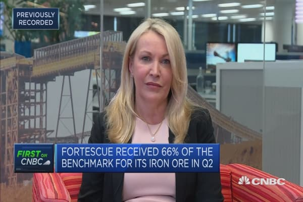 Discounts for high-grade iron ore to China should ease: forescue CEO