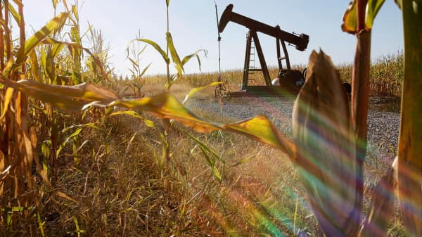 An oil well sits in the middle of a corn field near Norris City, Illinois.
