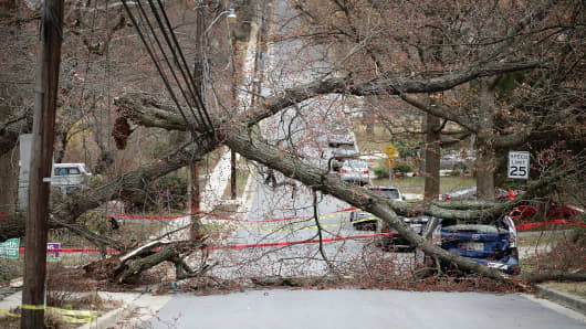 High winds downed a tree onto power lines, blocking the street and damaging a vehicle March 2, 2018 in Takoma Park, MD.