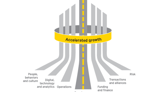 What successful entrepreneurs do differently, EY