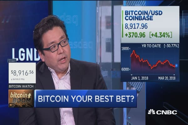As cryptos make a comeback, bitcoin is still your best bet: Tom Lee