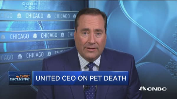 United CEO: We are reviewing our different options for pet transport