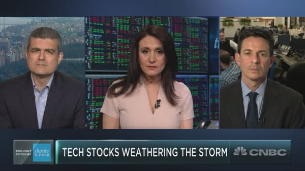 As tech stocks get pummeled, a few names are staying afloat