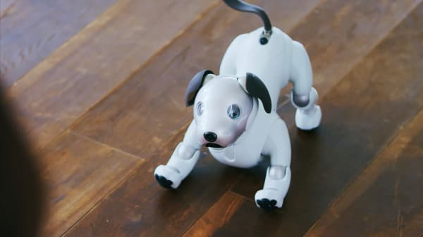 Sony S New Robot Dog Aibo Barks Does Tricks And Charms Animal Lovers