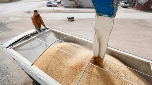 Terry Morrison of Earlham, Iowa, watches as soybeans are loaded into his trailer at the Heartland Co-op, Thursday, April 5, 2018, in Redfield, Iowa.
