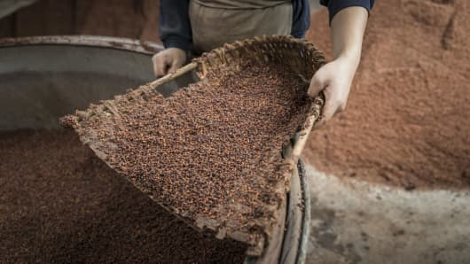 An employee holds a wicker scoop whereas getting ready sorghum for fermentation at the Kweichow Moutai Co. distillery.