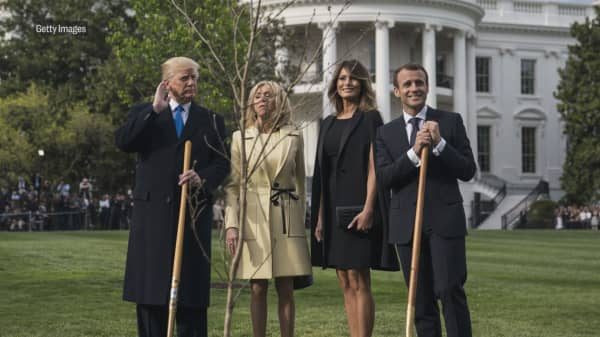 Tree planted by Trump and France's Macron mysteriously disappears