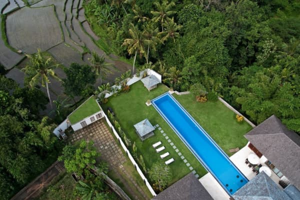 Pool at Canggu villa