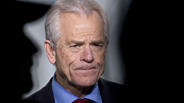 Peter Navarro, director of the National Trade Council.