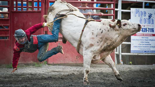 A cowboy falls from a bull during 'Battle of the Beast' bull riding competition