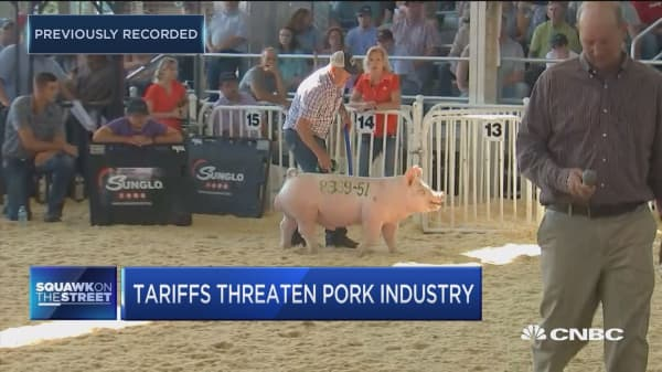 Exports are important part of the industry, says pork farmer