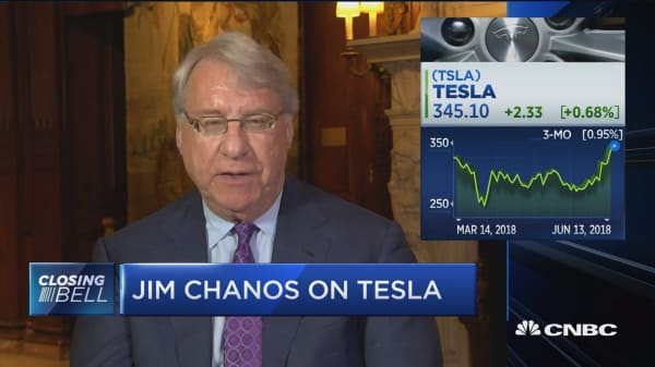 Chanos on Musk: He's making cars at not enough gross margin to make money