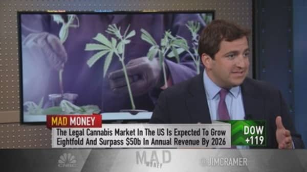 CEO of cannabis play says anti-marijuana laws create 'a moat' around business