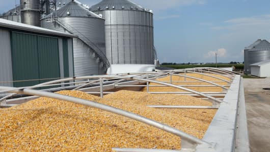 Corn loaded in trucks is seen at Wessling Farms near Grand Junction, Iowa.