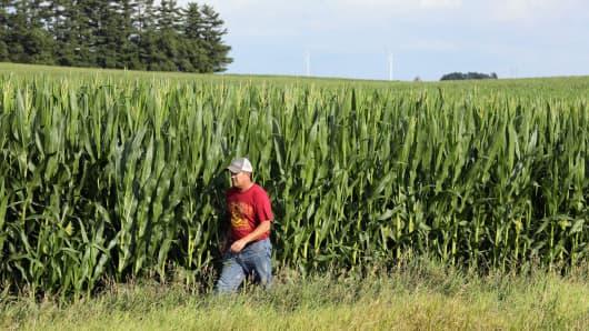 Farmer Bruce Wessling checks a corn field near Grand Junction, Iowa.