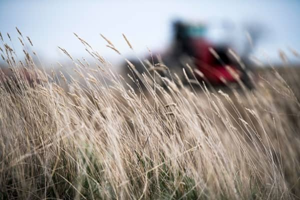 We depend on global markets for our high-quality grains: Montana farmer