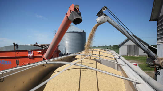 A trailer is filled with soybeans at a farm in Buda, Illinois, July 6, 2018.