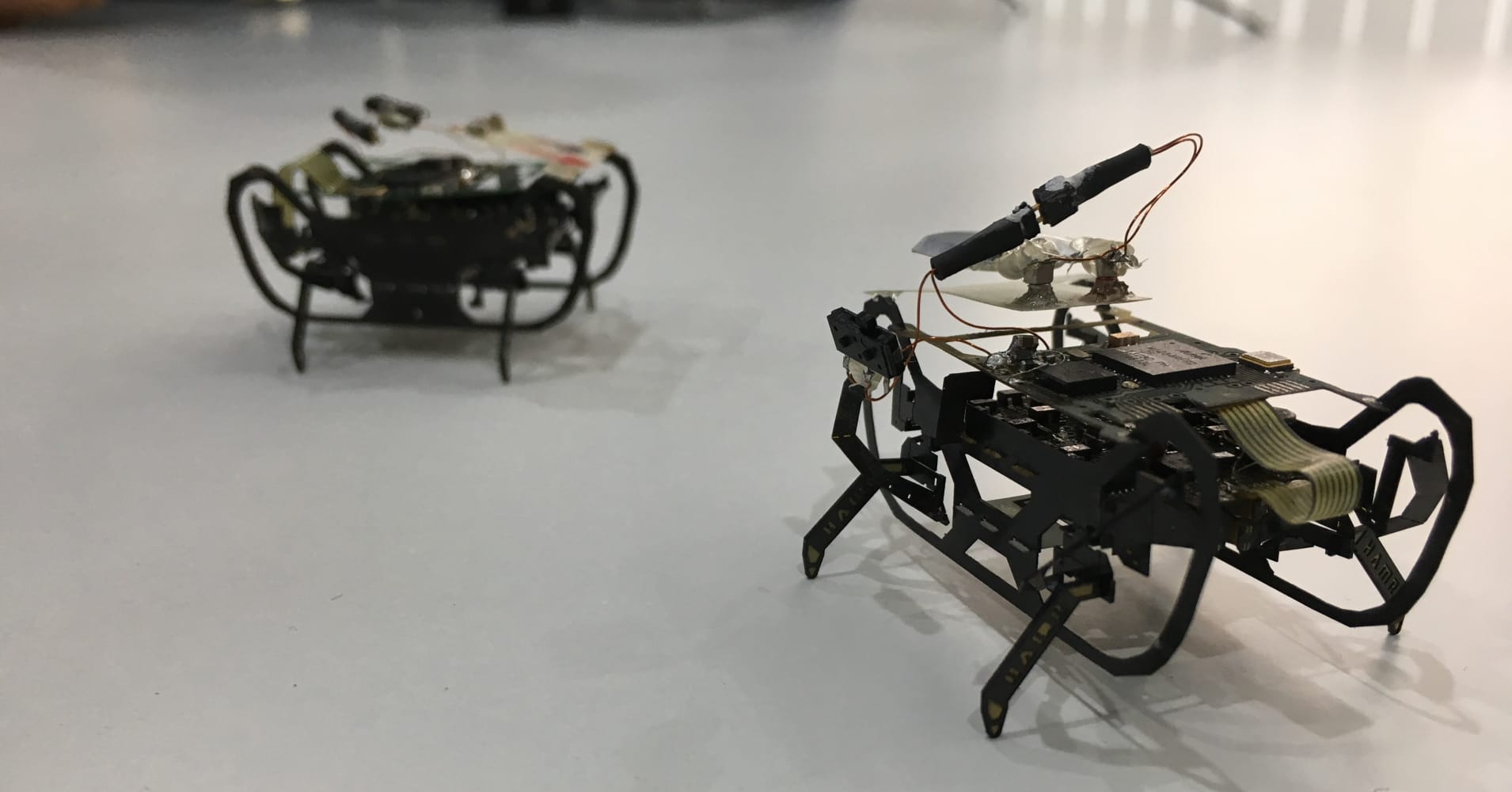 Tiny prototype robots developed by Harvard University using the cockroach as inspiration.