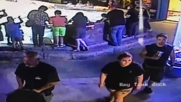Shark stolen from Texas aquarium recovered