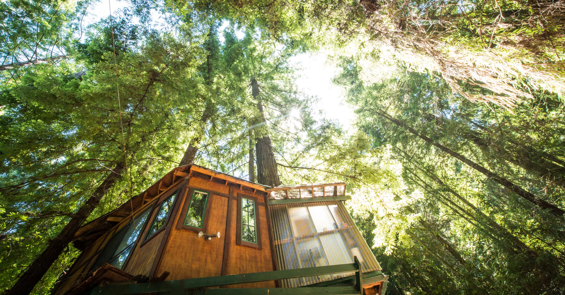 Spend a weekend glamping in a luxury treehouse nestled among the Sequoia forest.