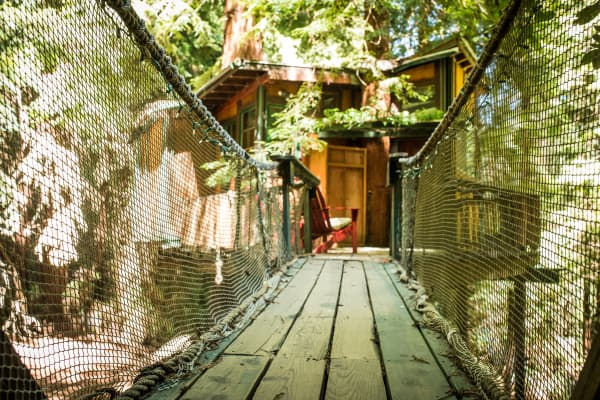A tree house situated among the Sequoia forest in California.