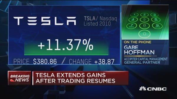 'I'm adding to my short', Tesla short seller agrees could be fraud