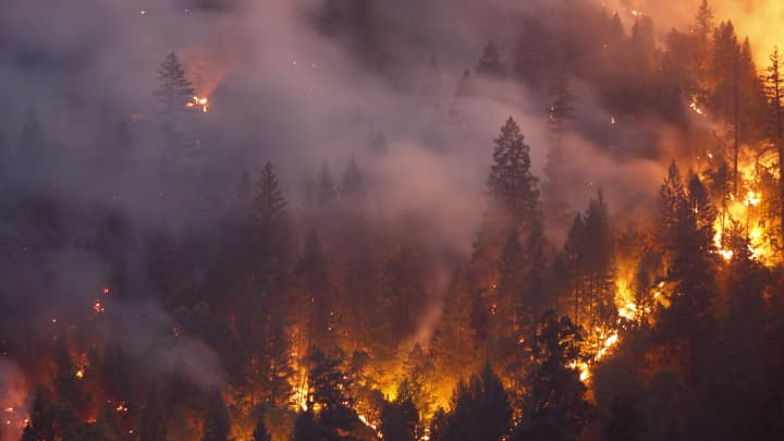 Forest burns in the Carr Fire on July 30, 2018 west of Redding, California.