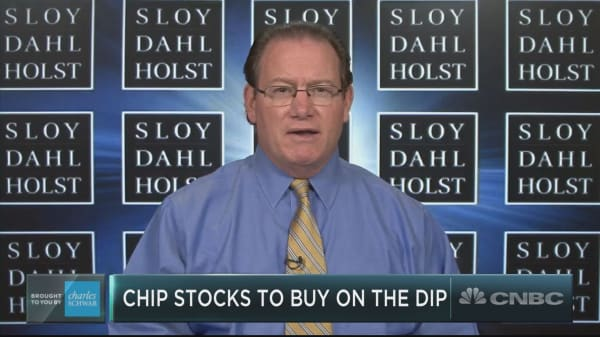 Buy these three semi stocks amid the chip carnage, says tech investor Paul Meeks
