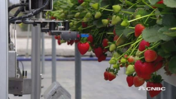 How tech is changing the way crops are farmed