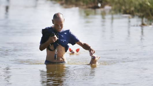 An elderly man saves two piglets submerged in flood water after several villages in Shouguang city suffered from torrential rain and widespread flooding brought by Typhoon Rumbia on August 23, 2018 in Shouguang, Shandong province of China.