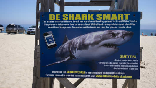 A sign warning swimmers of great white sharks in Cape Cod waters, at Nauset Beach in Orleans, Massachusetts, July 31, 2018.