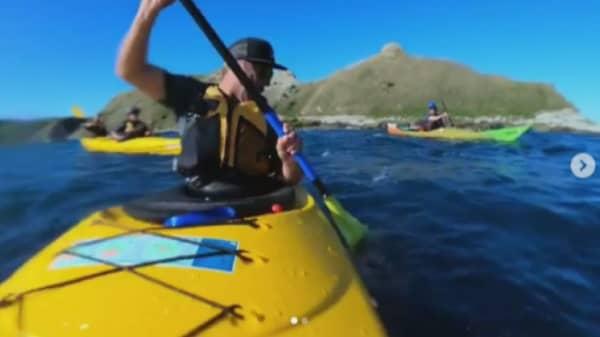 Seal slapping kayaker with octopus 180927 EC