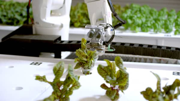 This start-up created the first farm in America run entirely by robots