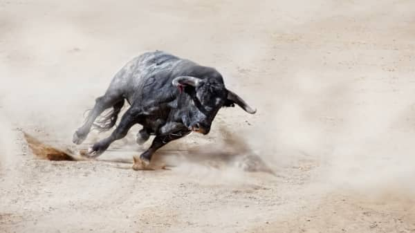 Is it too late to catch up to the big bull run investors are missing?