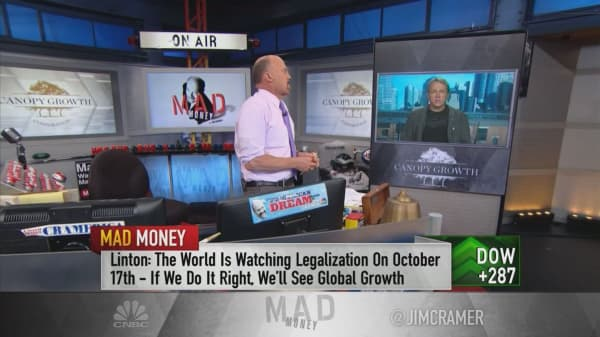 Marijuana CEO: Cannabis could disrupt a $500 billion market