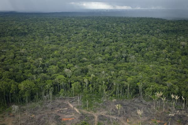 An overview of the dense canopy and deforestation in the Amazon rainforest outside Manaus, Brazil.