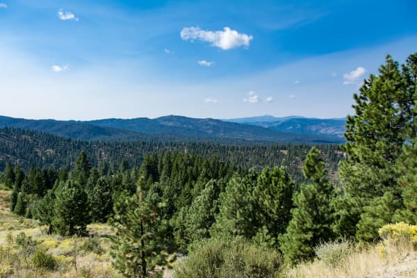 Boise National Forest in Idaho.