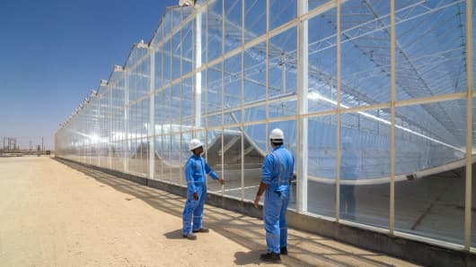 GlassPoint develops solar steam generators that use mirrors to concentrate sunlight and boil oilfield water into steam.