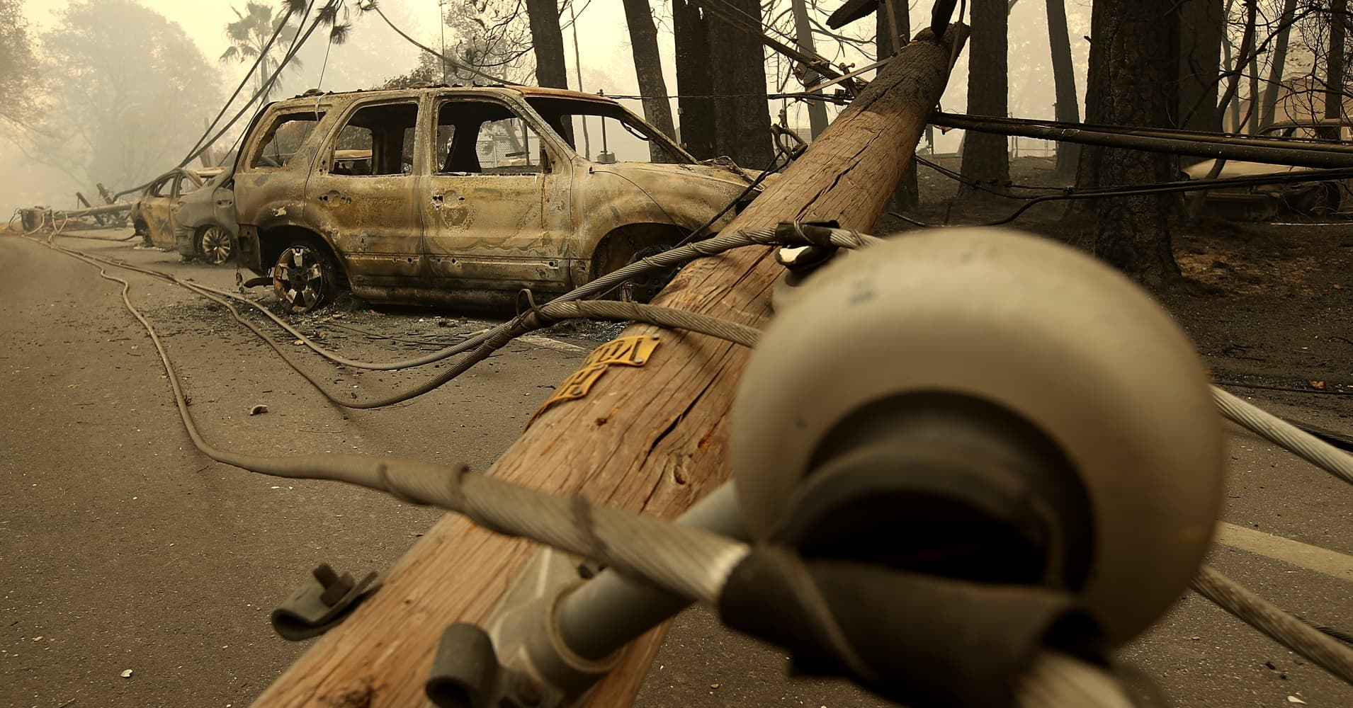 PG&E has lost half its value this week as shareholders fear utility's role in California wildfires