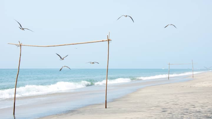 Soccer goals made from sticks on sandy beach and seagulls under clear sky, Panama