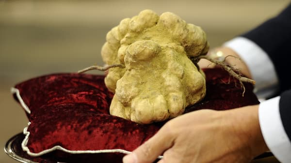 Someone paid $85,000 for 2 pounds of truffles, here's why