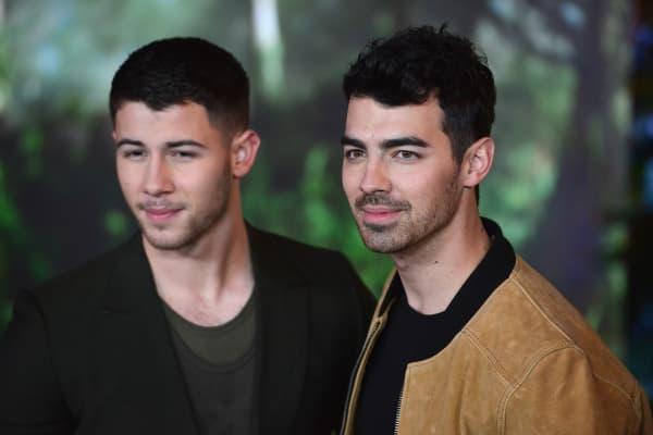 Actor/musician Nick Jonas and musician Joe Jonas