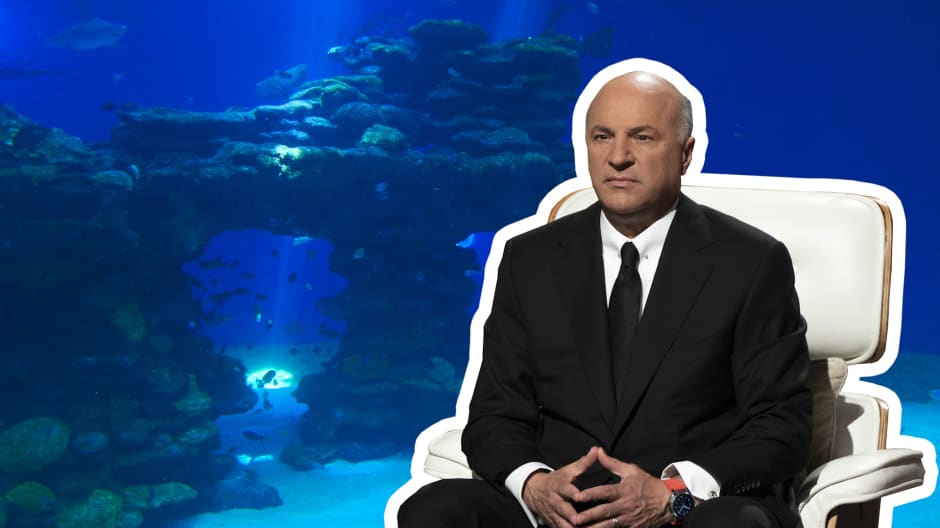 Kevin O'Leary's biggest 'Shark Tank' Winners