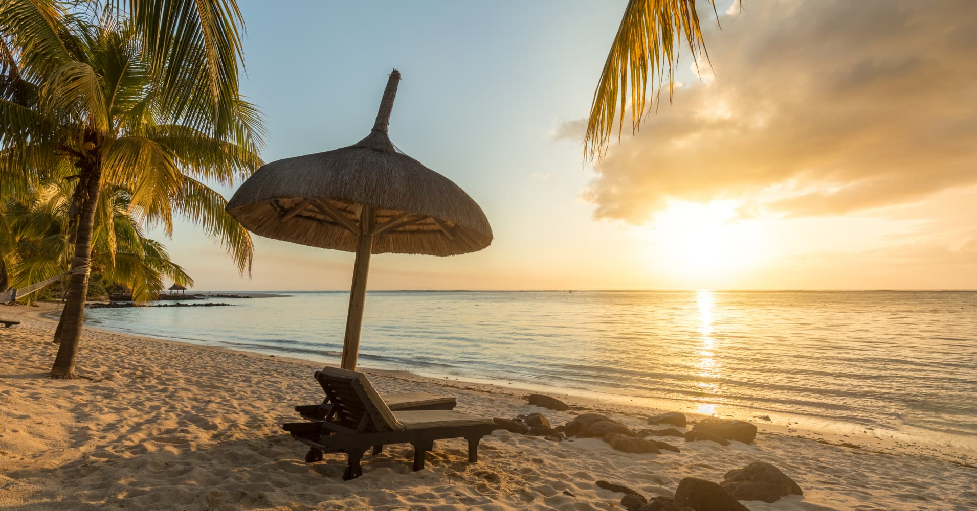 Paradisiac and Desert Island, white sand Beach, Palm tree at Sunset