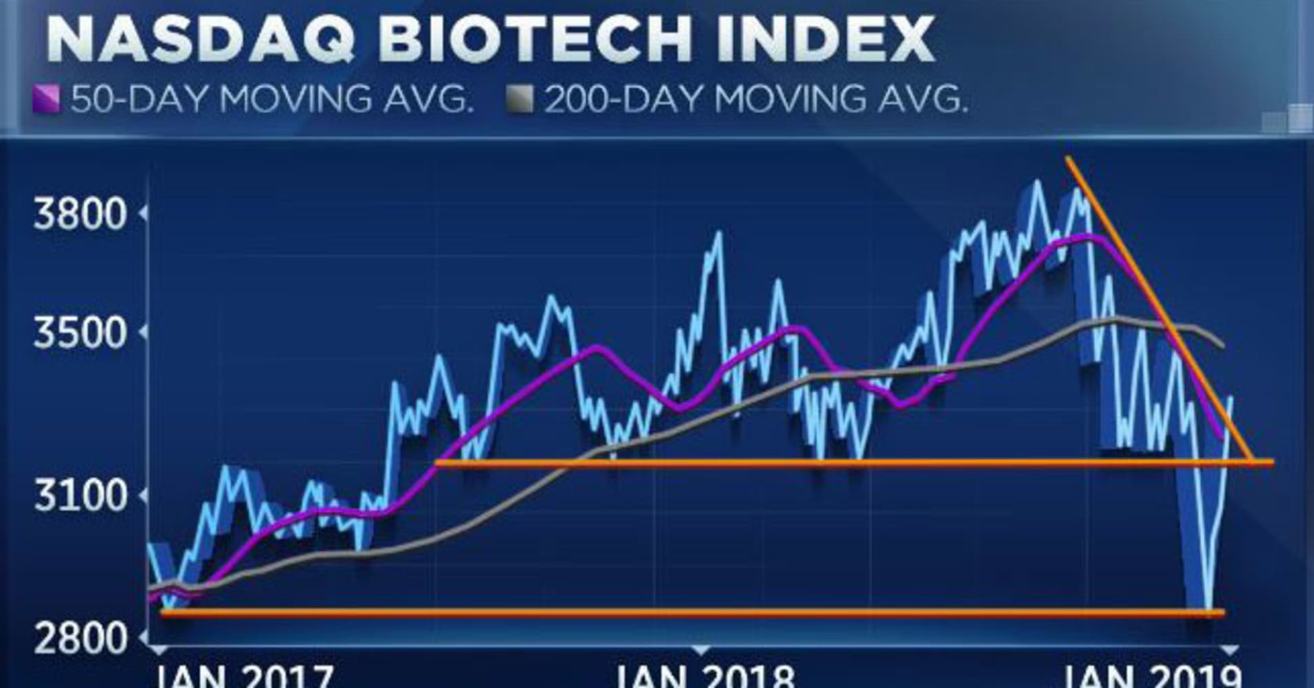 Biotech's breaking out, and here's why some market experts think an even bigger rally is ahead