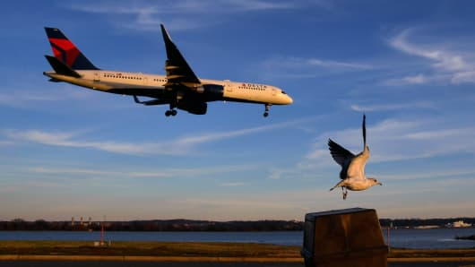 As an airliner prepares to land, a bird takes off at the Gravelly Point park that's just off the end of the runway near Reagan National Airport.